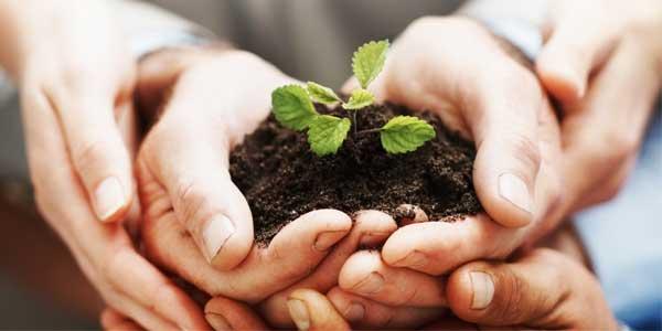 l'assurance multirisque agricole